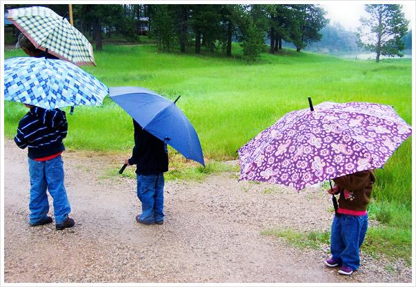 4umbrellas
